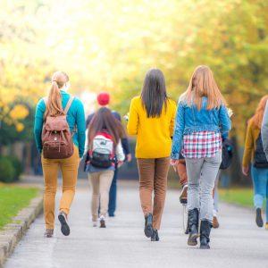 Ljetna škola engleskog jezika IH Young Learner Centre Moulton; engleski jezik ili briga o životinjama; za dob 12-17 godina
