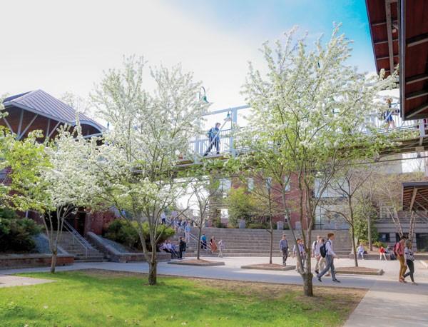 Srednja škola: Boarding school - St. Johnsbury Academy